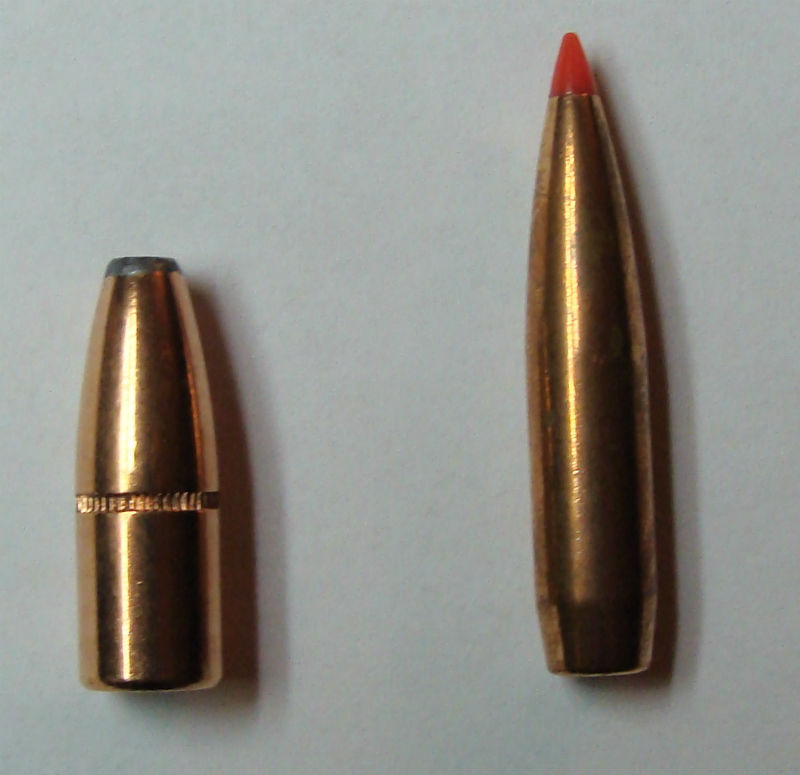hollow point and polymer bullets