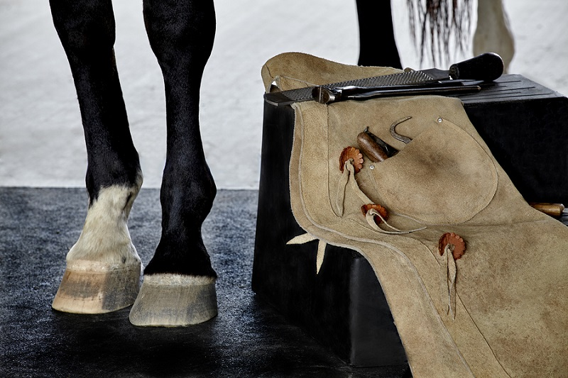horse hide leather