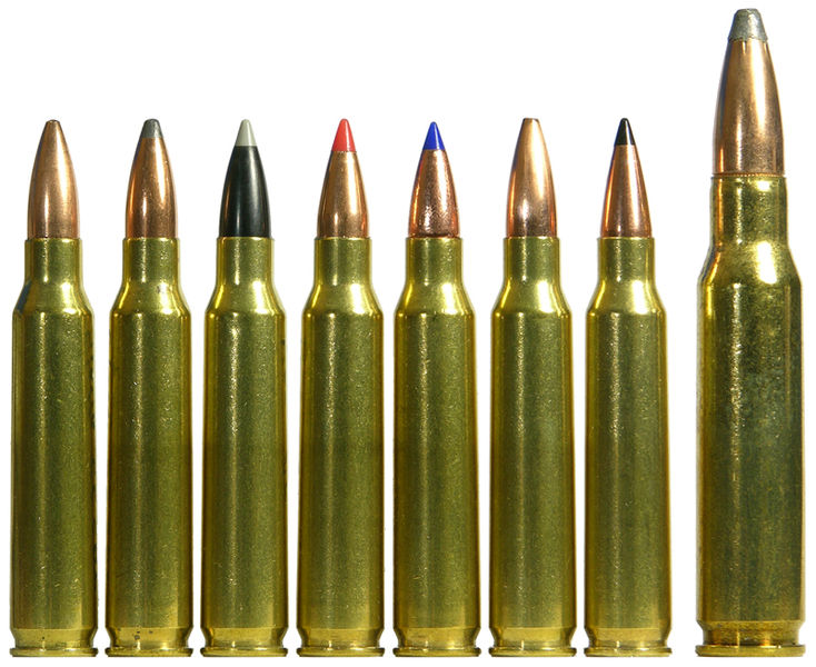 polymer tipped rounds
